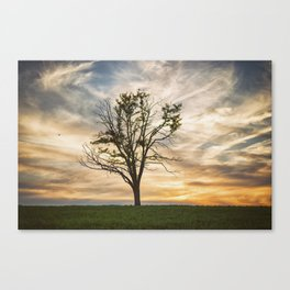 Kentucky Sunset Canvas Print