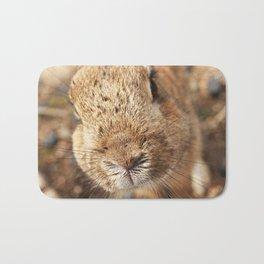 Rabbit Whiskers Bath Mat