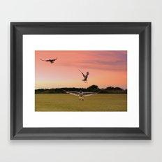 Gulls at Sunset Framed Art Print