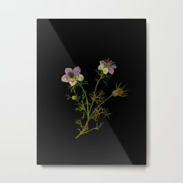 Nigella Hispanica Mary Delany Delicate Paper Flower Collage Black Background Floral Botanical Metal Print