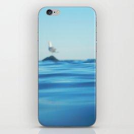 Seagull Adrift iPhone Skin