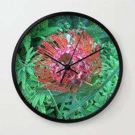 """Protea, """"Sugarbush"""" Wall Clock"""
