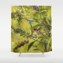 Great Spangled Fritillary on a Butterfly Bush Shower Curtain