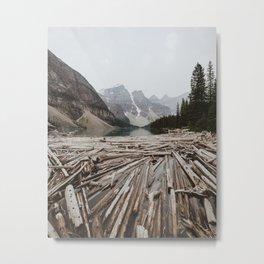 Swimming with Logs Metal Print