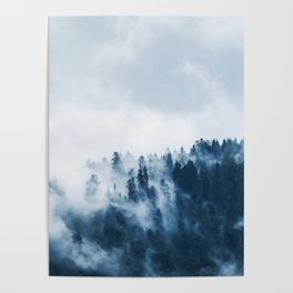 Cloudy and Foggy Forest Poster