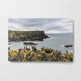 Travel to Ireland: Intro to Giant's Causeway Metal Print