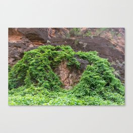 Heart of Hearts in Nature (Havasu Falls, Supai, AZ) Canvas Print