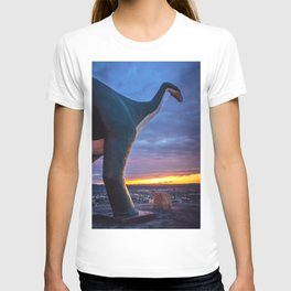 Walking in High Places T-shirt