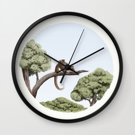 Common Ringtail Possum (Pseudocheirus peregrinus) Wall Clock