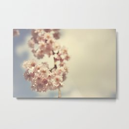 Spring In Bloom Metal Print