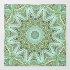 Kaleidoscope of Cacti Canvas Print