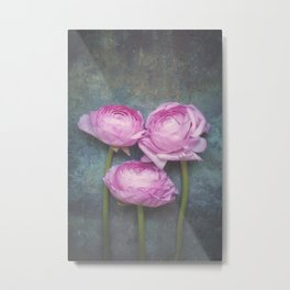 Beautiful Ranunculus Metal Print
