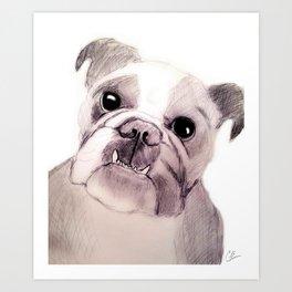 Bully Bull Dog Art Print