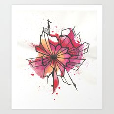 Pink and yellow Flower Explosion  Art Print