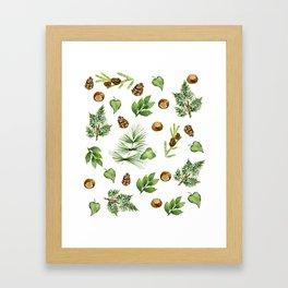 Chestnut Pines Framed Art Print