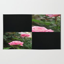 Pink Roses in Anzures 5  Blank Q2F0 Rug