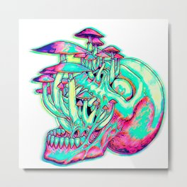Fun Guy Metal Print