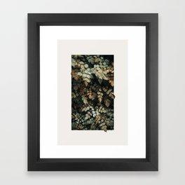 Growth (Autumn) Framed Art Print