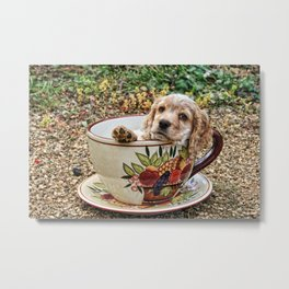 Teacup Puppy Metal Print