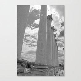 National Arboretum Canvas Print