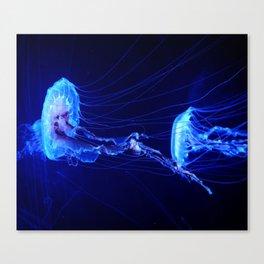 Electric Canvas Print