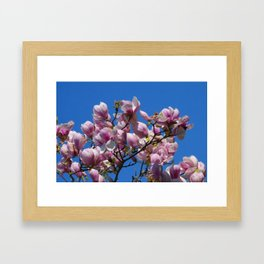 beautiful spring -2- Framed Art Print
