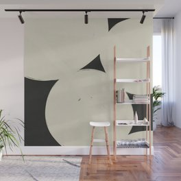 Finding Balance #3 Wall Mural