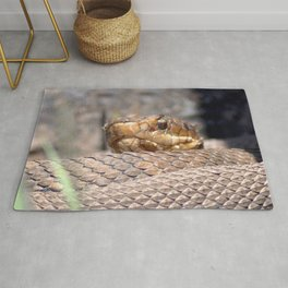 Watercolor Snake, Water Moccasin 10, Merchants Millpond, North Carolina, Coiled Warmth Rug