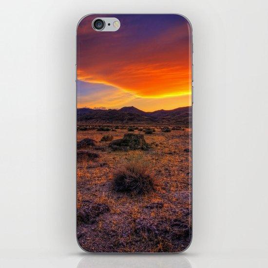 Desert Delight iPhone & iPod Skin