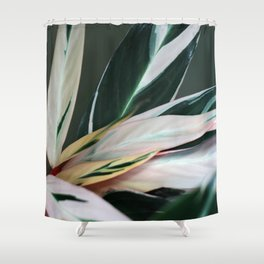 tropic of palm 6382 Shower Curtain