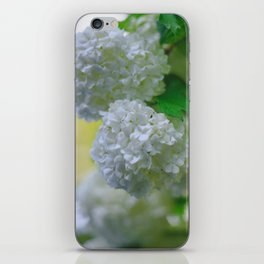 White Viburnum Flowers Branch Close Up Spring iPhone Skin