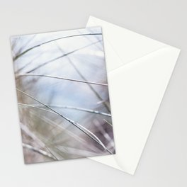 Sand Dune Grasses Perranporth Stationery Cards