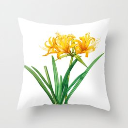 Golden Spider Lily, Yellow Lily, Amaryllis aurea, Golden Hurricane Lily by Pierre Joseph Redoute, Plate 61 Throw Pillow