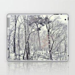 Greenwood in snow, Brooklyn Laptop & iPad Skin