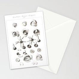 Human Anatomy Art Print EYE BALL IRIS Vintage Anatomy, doctor medical art, Antique Book Plate, Medic Stationery Cards