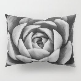 Spiral into the Depth of the Succulent Pillow Sham