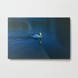 Swan Toward The Sun Metal Print