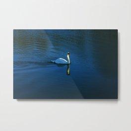 Swan Toward The Sun Metal Print