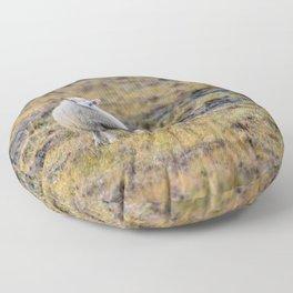 BAHHH Floor Pillow