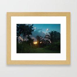 Jungle Sunrise Framed Art Print