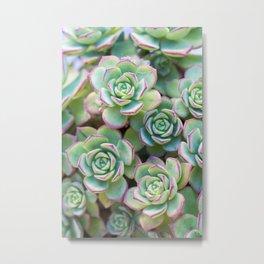 Green grass pattern Metal Print