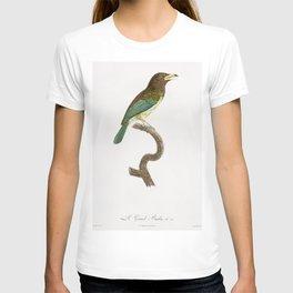 Russet-throated puffbird from Histoire Naturelle des Oiseaux de Paradis et Des Rolliers (1806) by Ja T-shirt