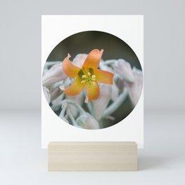 Bell Flower Mini Art Print