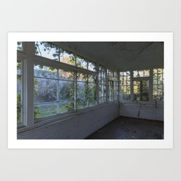Colourful Overgrown Greenhouse Art Print