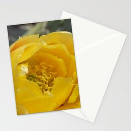 Prickly Pear Blossoms Stationery Cards