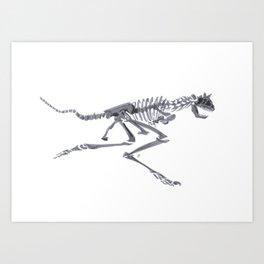 Carnotaurus (NHMLA) Art Print