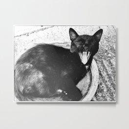 Black Cat Yawning Metal Print