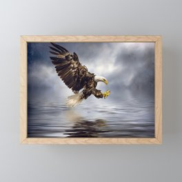 Bald Eagle swooping Framed Mini Art Print