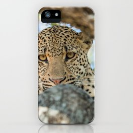 Serious look iPhone Case