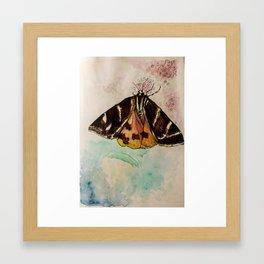 Butterfly Valley Framed Art Print